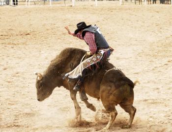 Man riding a bull.