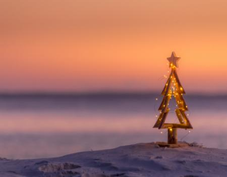 mini christmas tree in the sand on a beach