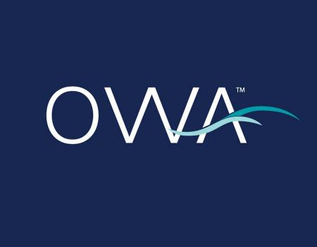 owa entertainment complex